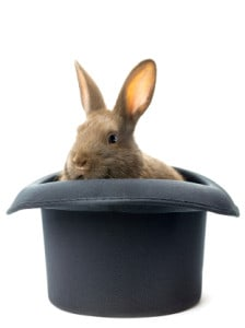 rabbit inside the hat